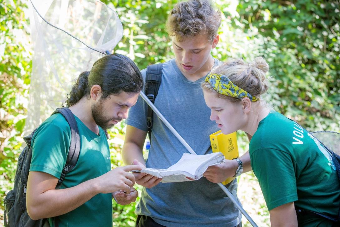 A group of Projects Abroad volunteers tries to identify different butterflies in the forest of Costa Rica.